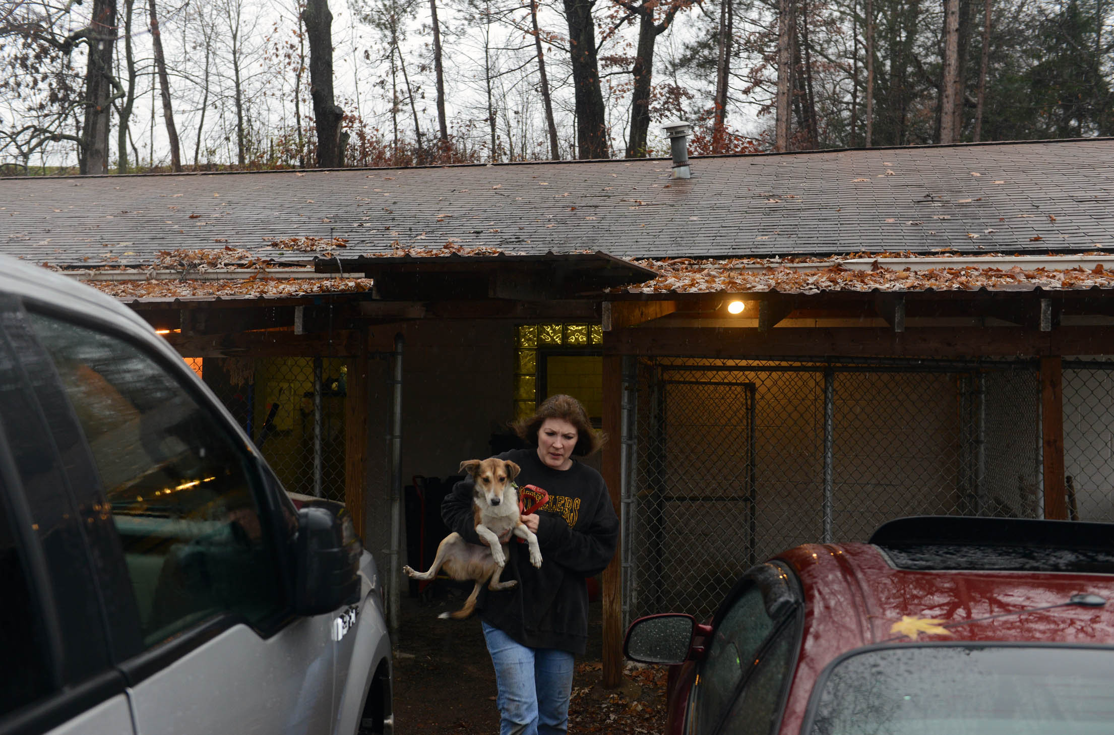 OrphansOfTheStorm1 Michael Henninger/Post-Gazette----local------- 10/29/12 Staffer Deb Pechan carries a dog named Timmy as volunteers and the staff of Orphans of the Storm, an animal shelter in Kittanning that sits close to the Allegeny River, work to evacuate animals in anticipation of possible flooding from Hurricane Sandy on Monday, Oct. 29, 2012.