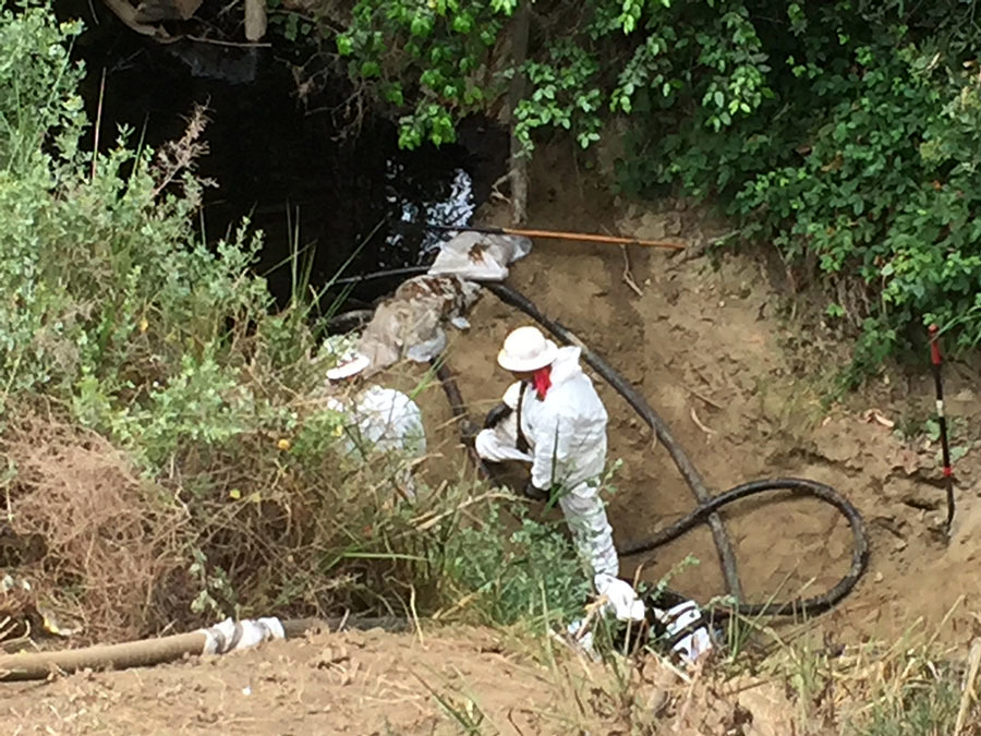 Up to 210000 gallons of oil spills from California pipeline