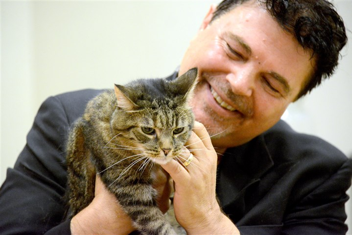 "20160722lf-Cat02-1 Comedian and animal lover Jim Krenn is the campaign manager for Dolly, the ""shop cat"" at WearWoof resale store who is running for president. The feline is campaigning on the promise to raise money for affordable spay/neuter programs."