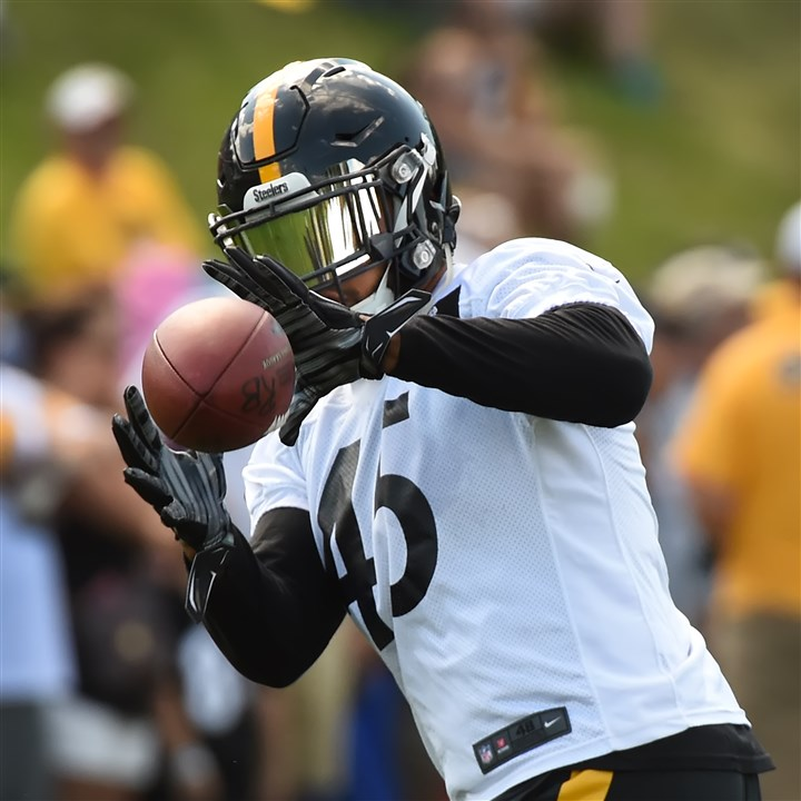 20160806pdsteelerssports07-6