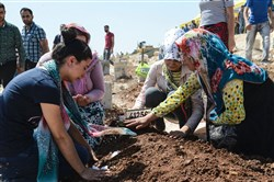 Women kneel by a grave at a cemetery during the funeral for the victims of Saturday's attack on a wedding party that left 50 dead in Gaziantep in southeastern Turkey near the Syrian border. The suspected suicide bomber linked to Islamic State radicals was between 12 and 14 years old, said Turkish President Recep Tayyip Erdogan on Sunday.