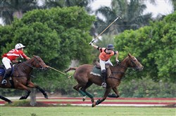 Jack McLean, a Sewickley resident, has been invited to compete in a national youth polo tournament.