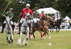 Family House Polo: Players from the red team, representing #1 Cochran, and the green team, representing Howard Hanna, chase after the ball at the Family House Polo Match at Hartwood Acres.
