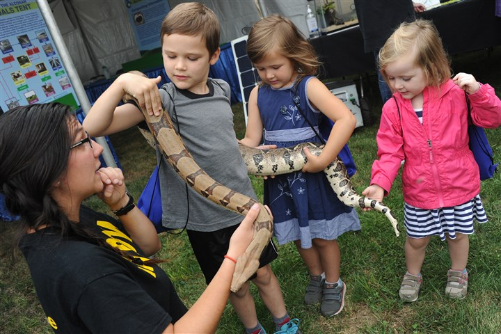 20160917lf-Alcosan02-1 Thomas Bird, left, 6, and her sisters Elizabeth, 5, and Rebecca, 4, of Beaver pet a rescued red-tailed boa on Saturday at the 14th Alcosan Open House at Allegheny County Sanitary Authority.