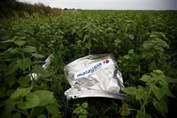 Debris from a Malaysian Airlines Boeing 777 that crashed in July 2014 lies on the ground near the village of Rozsypne in the Donetsk region.