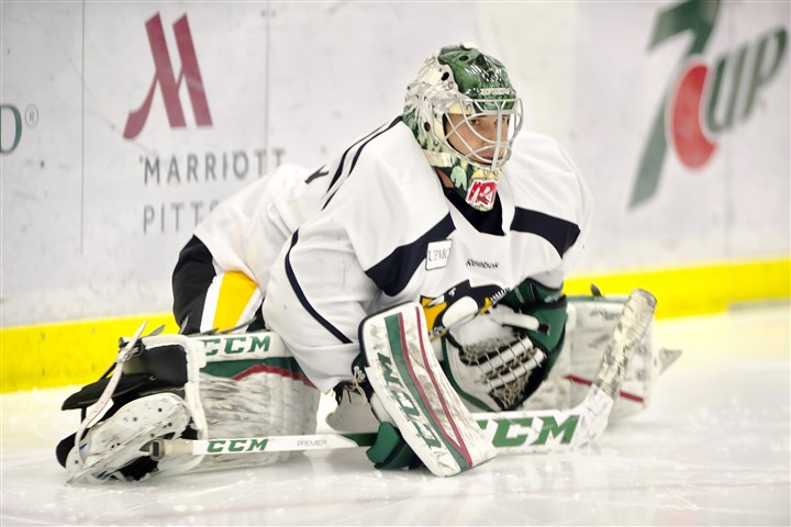 Goaltender Leland Irving is learning about Pittsburgh and hopin…