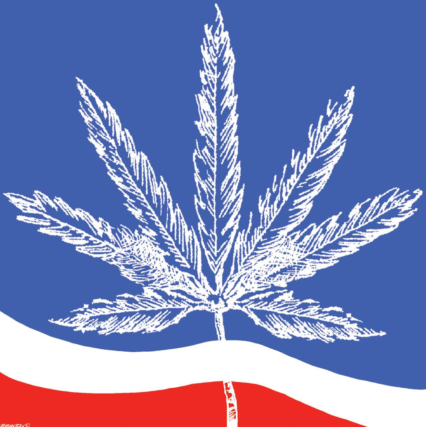 Is The DEA Wasting Money Eradicating Marijuana Plants?
