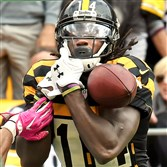 Sammie Coates drops pass from Ben Roethlisberger in the third quarter against the Jets at Heinz Field.