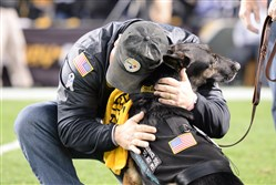 John Kelly, an Army veteran, hugs Ranger, his service dog at the Nov. 13 football game between the Steelers and the Dallas Cowboys at Heinz field.