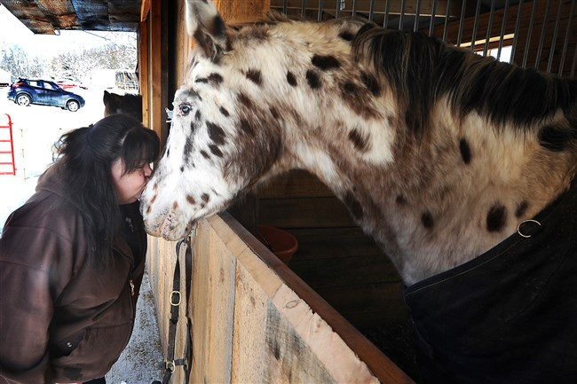 Renee Karoly gives Aladar, a blind Appaloosa, a kiss at the Quest Stables Dec. 14, 2016. Ms. Karoly said Aladar and another horse survived the fatal fire at the stable earlier this year.
