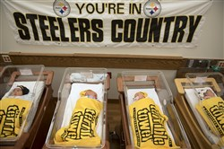 "Newborn babies sleep snuggled in Terrible Towels at ""Nursery Nation,"" the St. Clair Family Birth Center at St. Clair Hospital in Mt. Lebanon, where the nurses dressed newborns in Terrible Towels and Steelers beanies throughout the NFL playoffs in Jan. 2017."