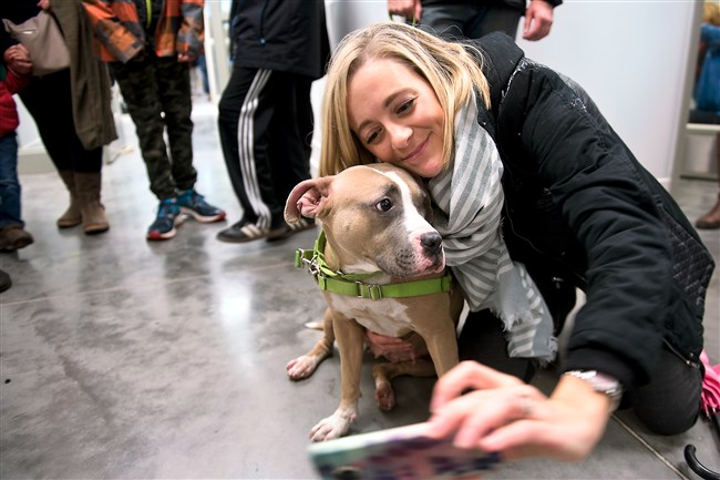 Christen Malone, a volunteer at the Humane Society, takes a selfie with Dawn, a pit bull up for adoption at Animal Rescue League, after the parade down the street to their new location in Homewood on Monday.