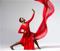 Joy-Marie Thompson, a dance major at SUNY Purchase in New York, chose historical dance figures that have had an impact on her. Along with her mother, a Pittsburgh artist, she was inspired by photographs of these people in their original poses. This photo is a tribute to dance legend Carmen de Lavallade, who appeared at the Kelly Strayhorn Theater in 2014, then 83, with her one-woman show.