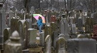 People search for loved ones' graves at Chesed Shel Emeth Cemetery in University City, Mo.