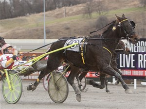 Trailing by 7½ lengths at the half, Barn Girl unleashes a sustained bid for Aaron Merriman that carried her to victory on Jan. 18 in the $20,000 Filly & Mare Preferred Handicap Trot at The Meadows.