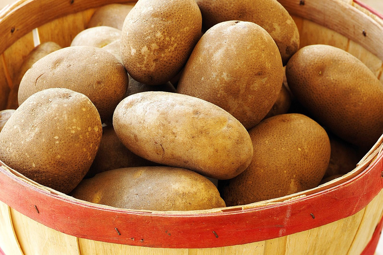 russet potatoes-4 Russet potatoes are medium- to large-sized potatoes that are preferred for baking and mashing.
