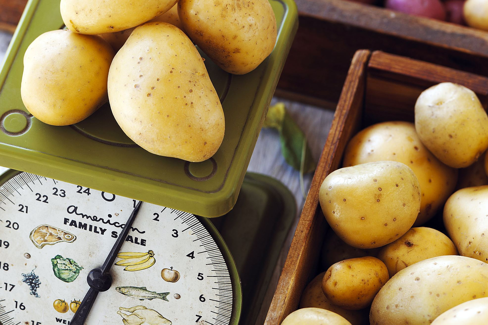 yellow potatoes-6 Yellow potatoes are round or oblong in shape, and slightly waxy, creamy and moist in texture.