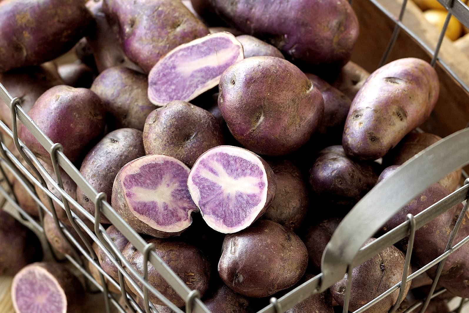 purple potatoes-2 Purple/blue potatoes range in shape from oblong to fingerling, and pop in salads because of their color. Their firm flesh also helps to retain shape when cooked.