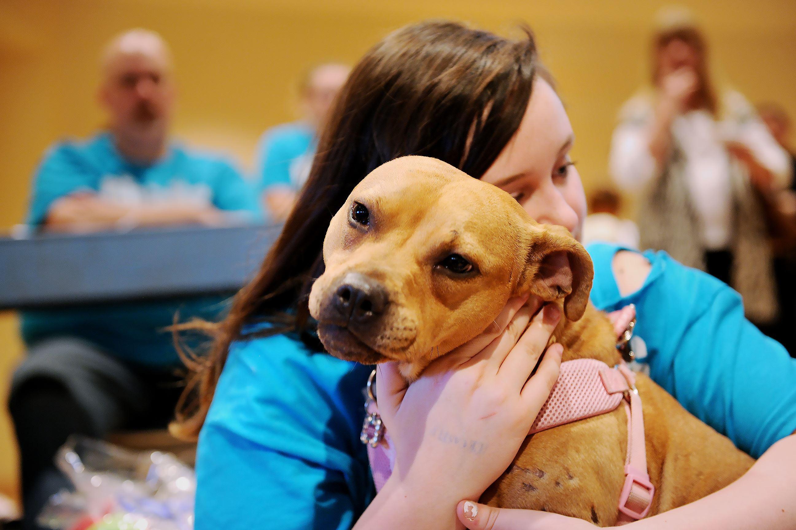 20170304rldBiscuitBingo05-3 Katrina Luffey, 12, hugs Effie during the bingo event.