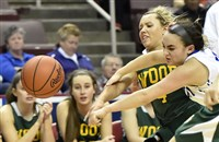 Archbishop Wood's Cassie Sebold and Trinity's Alayna Cappelli go for a loose ball in the PIAA Class 5A championship Saturday, March 25, 2017 at the Giant Center in Hershey.