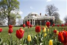 Former President Thomas Jefferson's home, Monticello, in Charlottesville, Va.