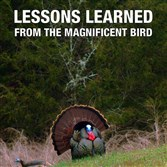 """Lessons Learned From The Magnificent Bird"" by Gary Sefton"