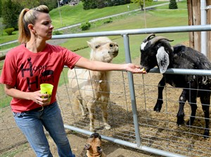 Karen Phillips feeds Dixon, the black goat, and Butters, the mini horse at Hope Haven Farm Sanctuary in Franklin Park.