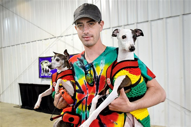Jason Dunkle of Washington, Pa., brought his two Italian greyhounds Roxy, 7, left, and Greyson, 2, to last weekend's PETCON Pet and Equine Expo at the Washington County fairgrounds. He said he planned to enter the costume contest.