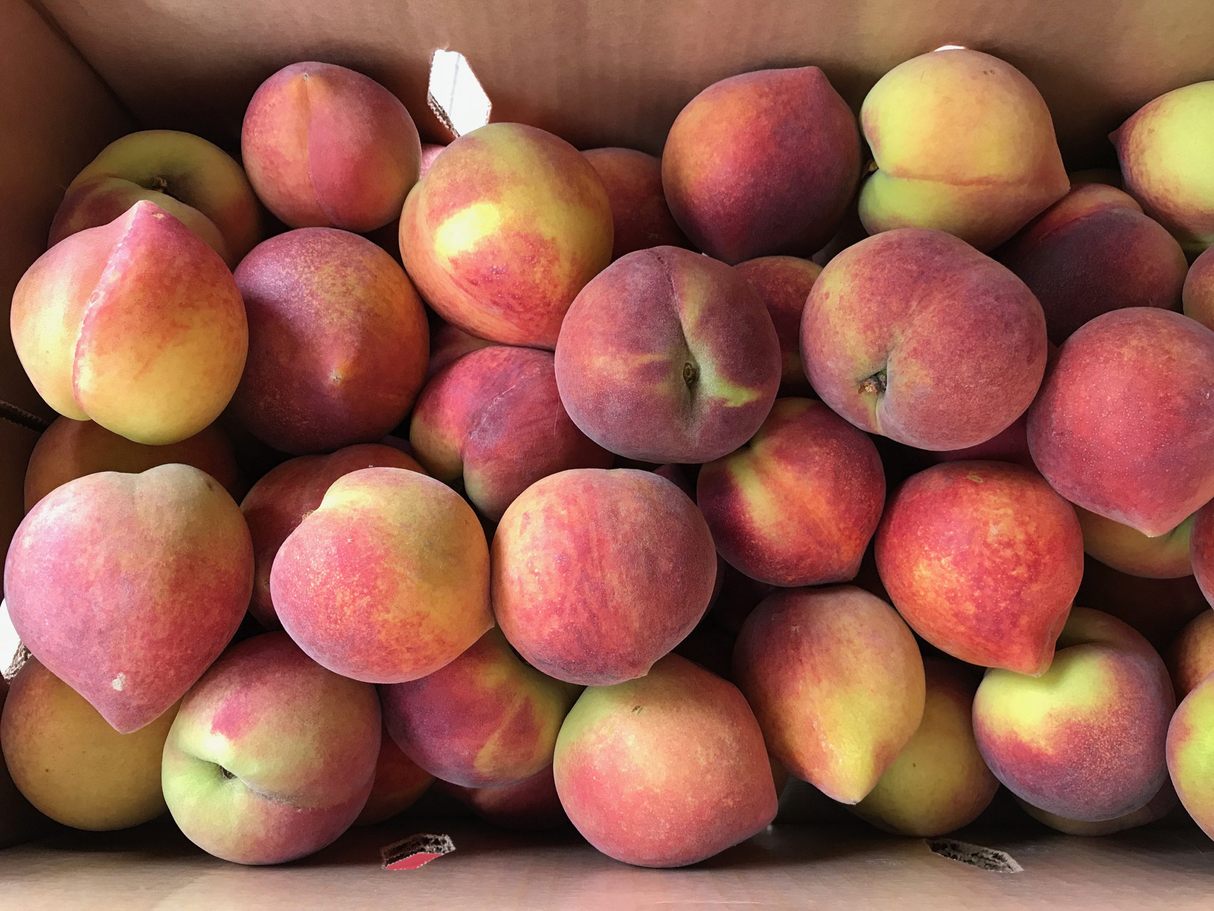 peaches The Peach Truck sold 25-pound boxes of cling peaches Sunday at six locations in Western Pennsylvania.
