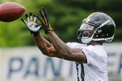 Eli Rogers makes a catch during OTAs in June.