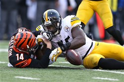 Arthur Moats beats Bengals QB Andy Dalton to a loose ball during a December 2014 game in Cincinnati, Ohio.