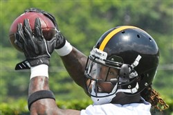 Steelers' receiver Martavis Bryant makes a catch during Mini Camp Tuesday at the UPMC Rooney Sports Complex on the South Side. His position coach, Richard Mann, says Bryant is fitting in well as he comes back from a season-long drug suspension.