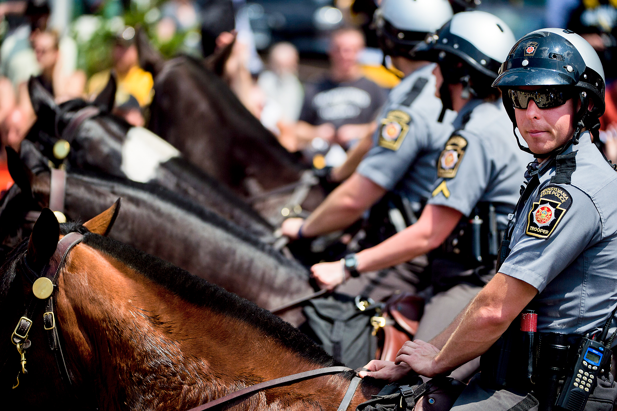 20170614scPoliceHorse01 Police horses ride in the Penguins victory parade on Wednesday at Grant Street and Boulevard of the Allies.