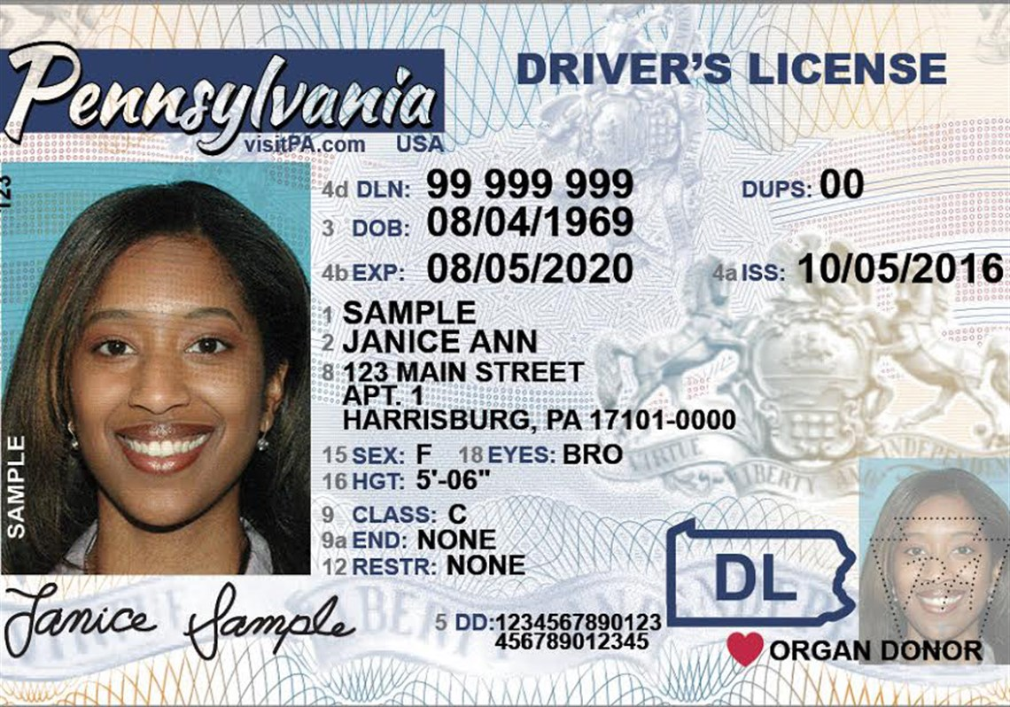 Real Drivers License