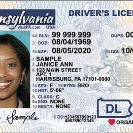 - Linoags On S License Dups Your Driver
