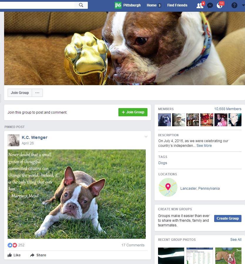 """justice-forlibre-facebook-page """"Justice for Libre"""""""