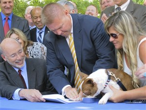 After getting the signature of Gov. Tom Wolf, left, Pennsylvania's animal cruelty bill gets a paw print by Libre, a Boston terrier puppy who was emaciated and diseased when he was rescued last year by a delivery truck driver from an animal breeder in Lancaster County.