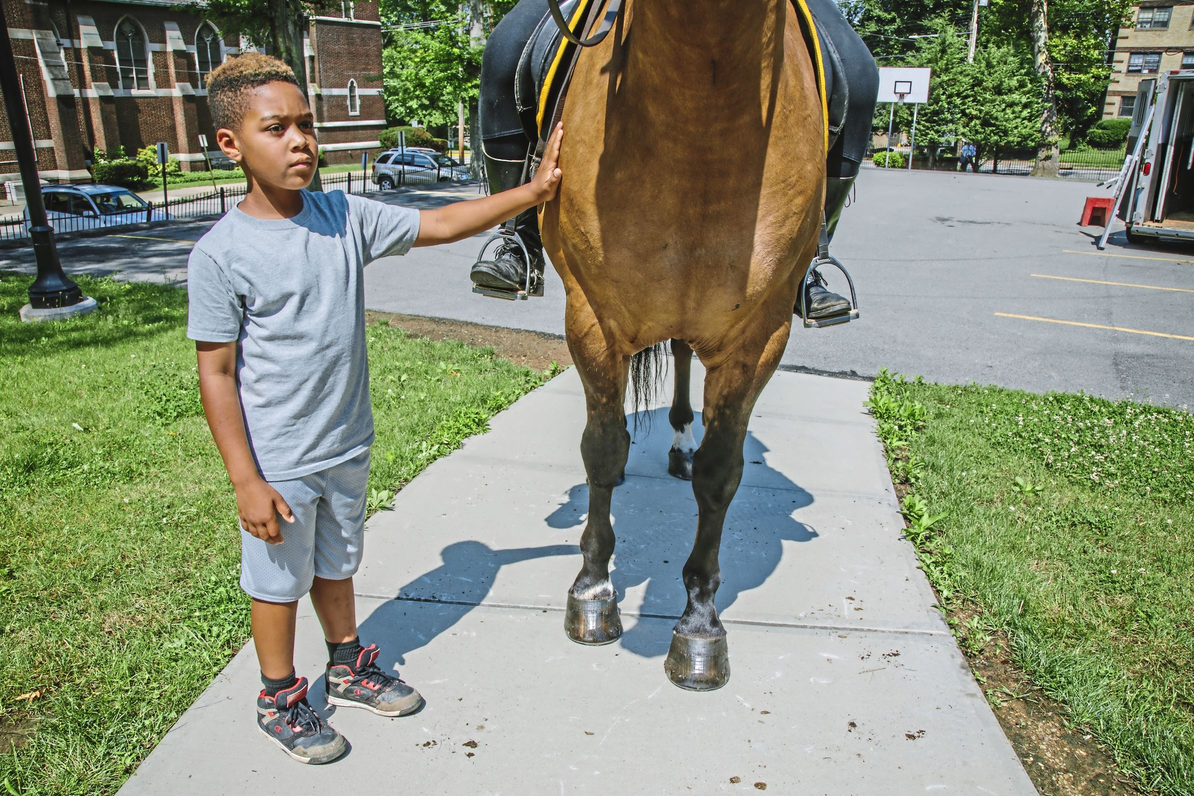 """20170711arHorseAcademy08-7 David Hughes, 9, of Elliott, pets Milo. The black shading on the animal's legs are part of what is called """"grullo"""" horse coloring. Such horses also have a black stripe on the back, among other color characteristics."""