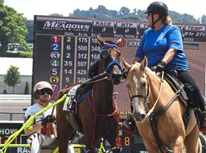 Missy Rothfuss and Dude turn around Aaron Merriman and his horse Great Kate for the start of a race at the Meadows Racetrack & Casino in North Strabane. Missy and Dude escort the trotters and pacers and their sulkies as they up for the races.