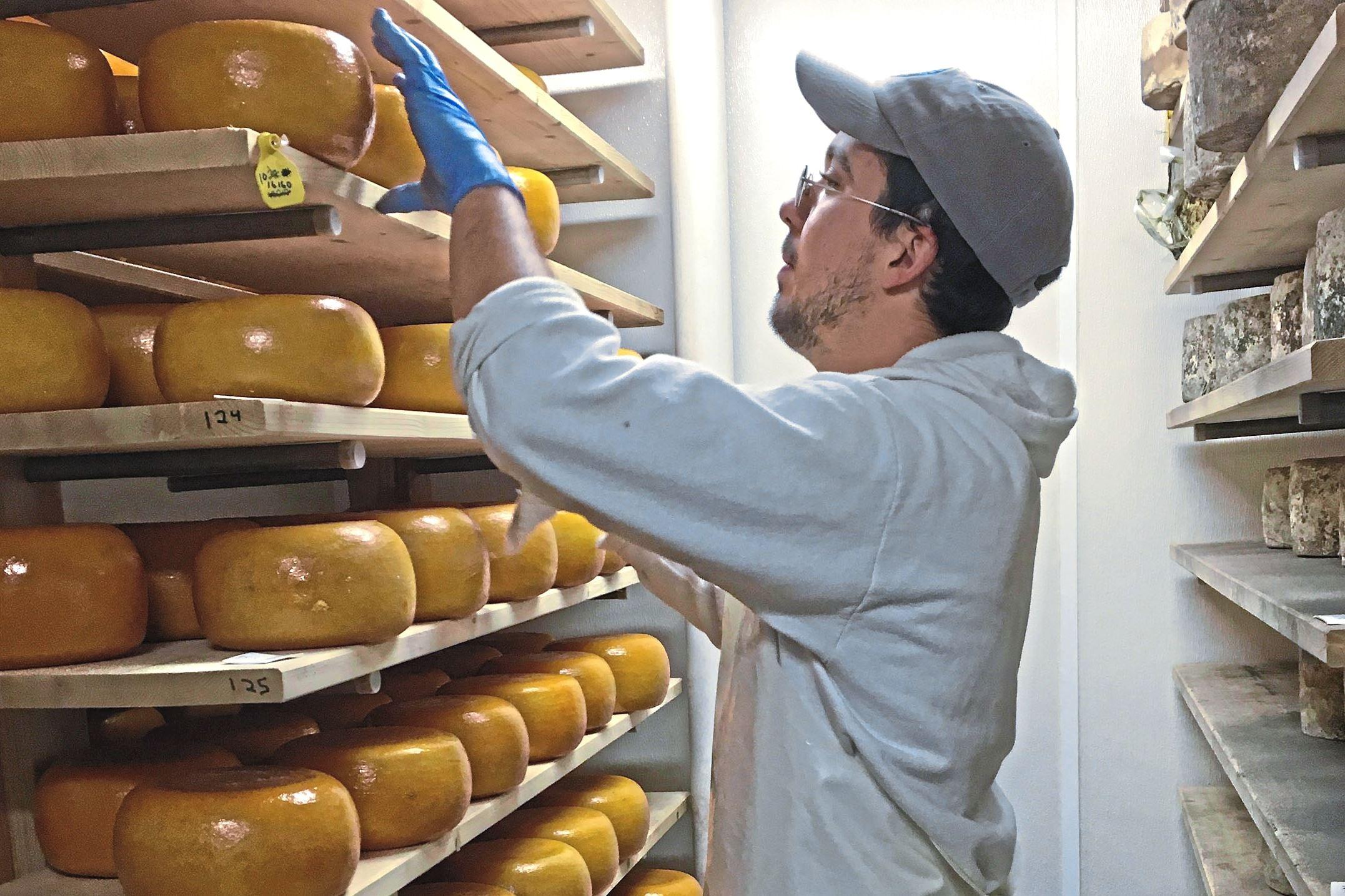 goat rodeo hootenanny 2-1 Head cheesemaker Matt Rychorcewicz stacks wheels of Hootenanny in the creamery at Goat Rodeo Farm & Dairy.