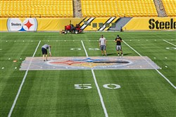 Workers paint a large Steelers logo stencil at the 50 yard line during a media tour at Heinz Field on Friday.