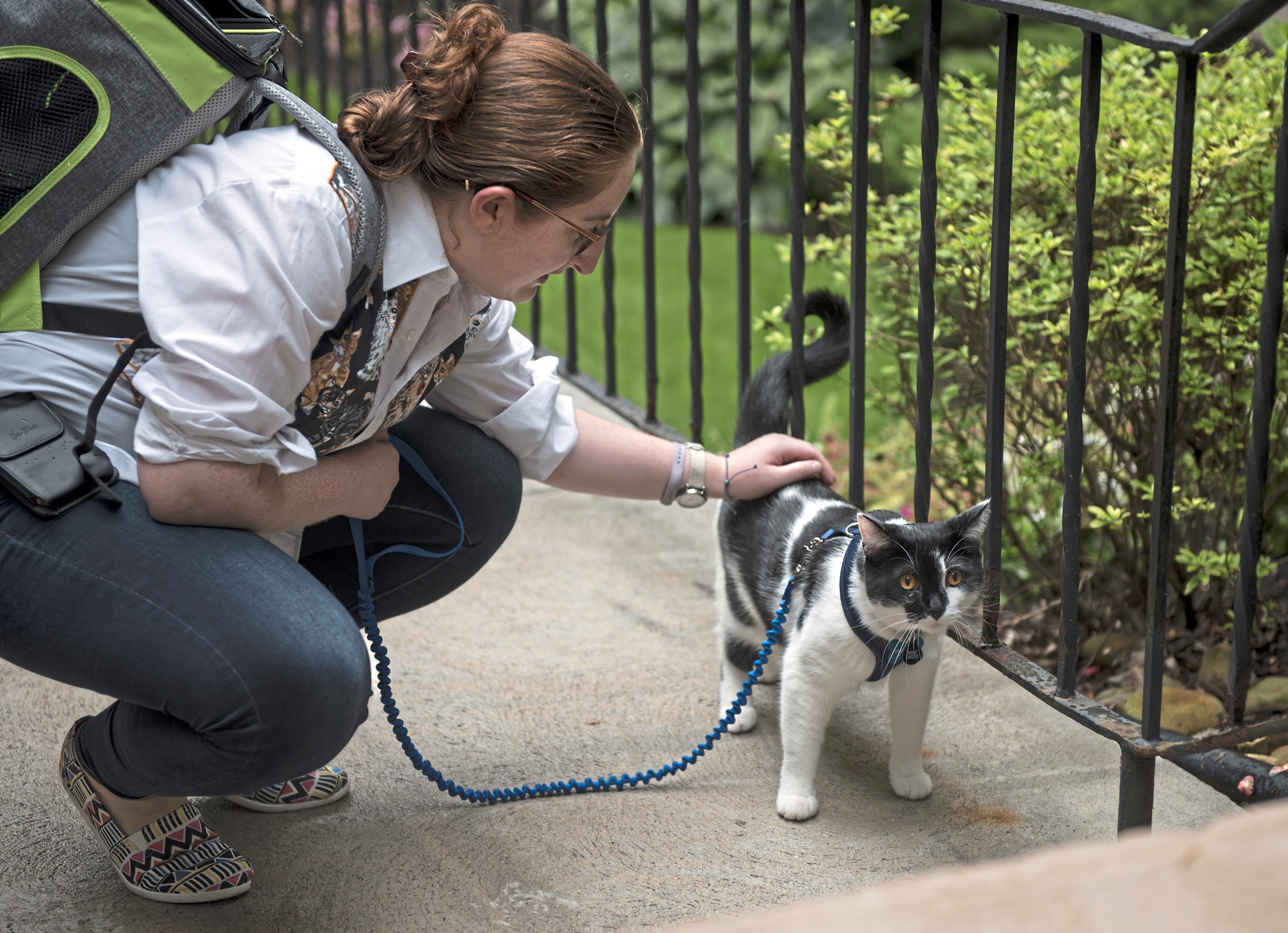20170817hnCaturday-2-1 Ariel Kornhauser of Squirrel Hill and her cat, Frisky Lincoln, organize First Caturdays at Schenley Park in Oakland.