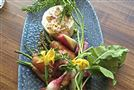 Acorn Radish and Carrot