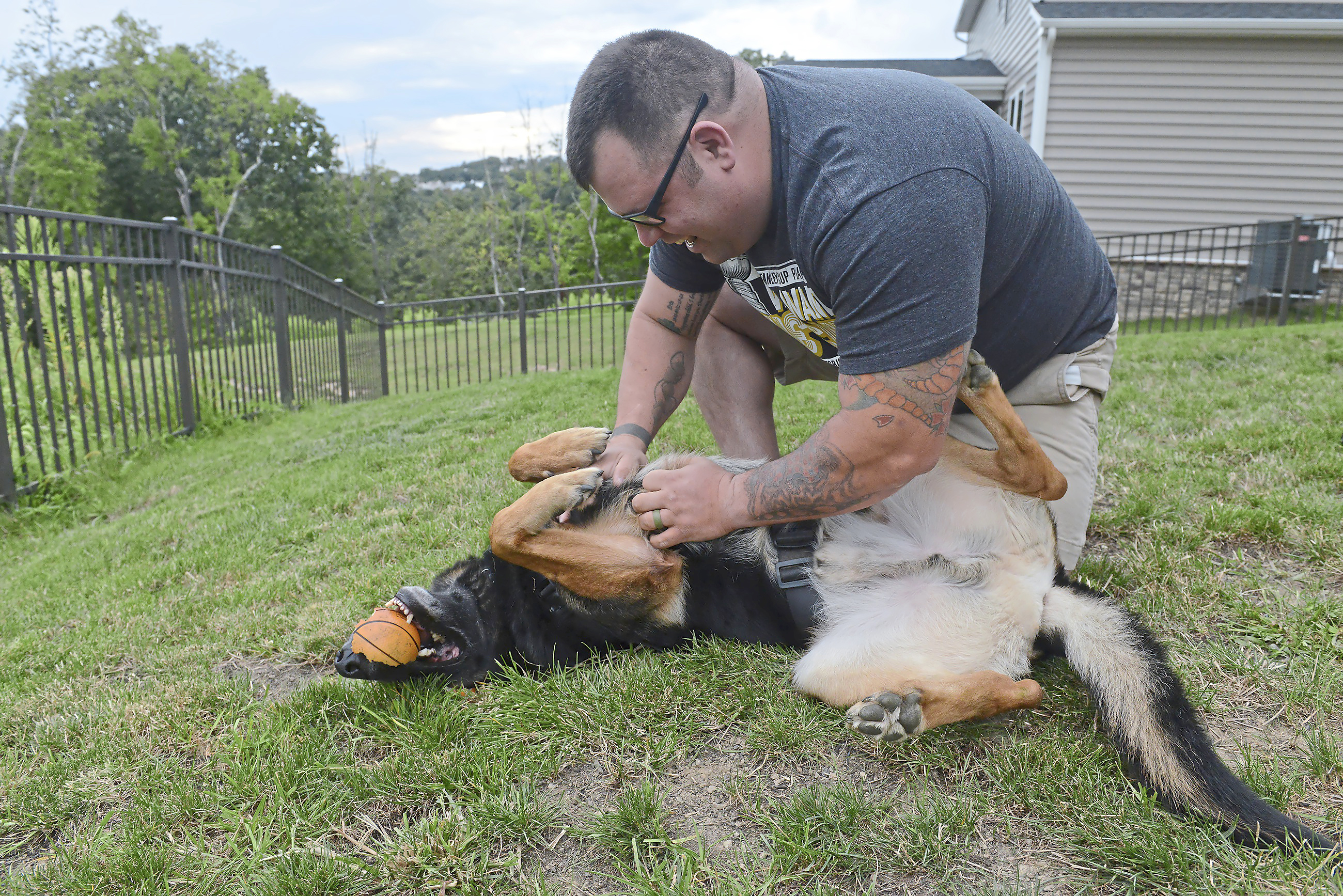 20170901rldRanger02-1 Retired Army Capt. John Kelly plays with his service dog, Ranger, at home in Jefferson Hills. He was partnered with Ranger via Guardian Angels Medical Service Dogs in Williston, Fla.