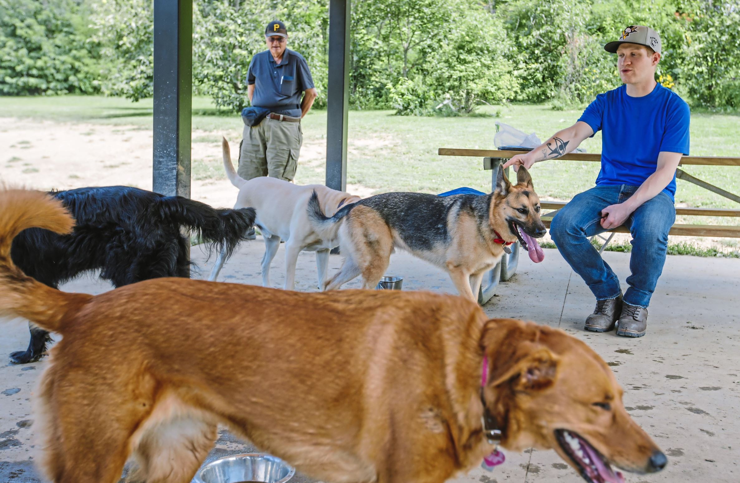 20170829arDogParks06-5 Rich Prokopovich, left, of Bethel Park and Shawn Wright of Castle Shannon watch their dogs play with other dogs in the pavilion at the South Park Dog Park.