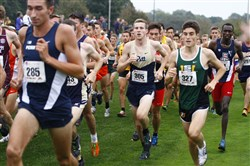 Nick Wolk, a Peters Township alum, is one of nine WPIAL products on Pitt's cross country team.
