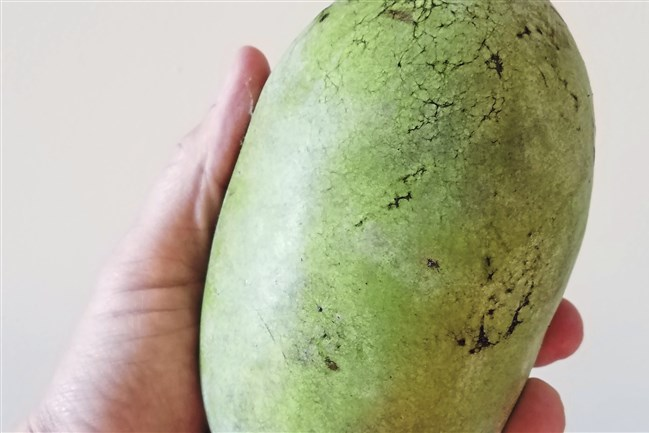 The pawpaw is native to more than 20 states, but is still largely unknown. It has creamy, custard-like flesh that takes like a cross between mangoes and bananas.