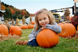 The annual Autumnfest will be held every weekend through Oct. 22 at Seven Springs Mountain Resort in Champion.