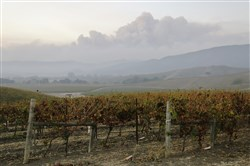 Smoke from wildfires in the Sonoma Valley makes its way toward the Napa Valley, in this view from the Carneros wine region, Oct. 10, 2017, in Napa, Calif.