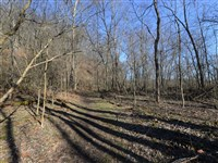 The Ruins Trail in Dead Man's Hollow, part of the Allegheny Land Trust in Lincoln and Liberty boroughs and Elizabeth Township. The trust will hold a paranormal activities hike later this month in the hollow.